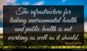 Samuel Wilson quote : The infrastructure for linking ...