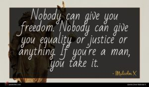 Malcolm X quote : Nobody can give you ...
