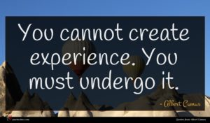 Albert Camus quote : You cannot create experience ...
