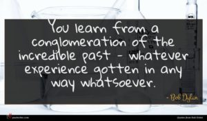 Bob Dylan quote : You learn from a ...