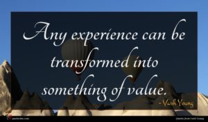 Vash Young quote : Any experience can be ...