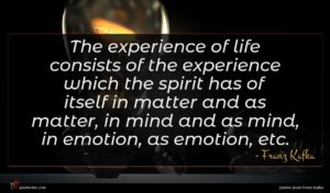 Franz Kafka quote : The experience of life ...