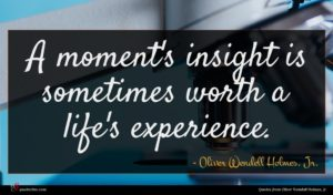 Oliver Wendell Holmes, Jr. quote : A moment's insight is ...