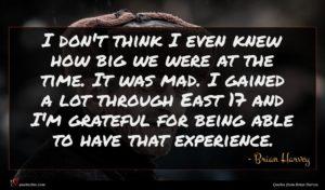 Brian Harvey quote : I don't think I ...