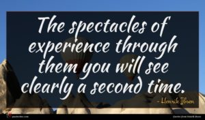Henrik Ibsen quote : The spectacles of experience ...