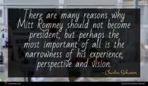 Charles Schumer quote : There are many reasons ...