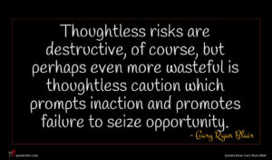 Gary Ryan Blair quote : Thoughtless risks are destructive ...