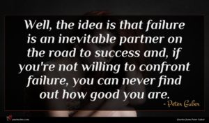 Peter Guber quote : Well the idea is ...