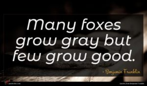 Benjamin Franklin quote : Many foxes grow gray ...