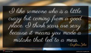 Angelina Jolie quote : I like someone who ...