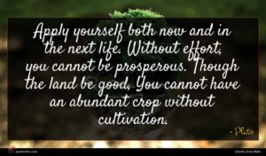 Plato quote : Apply yourself both now ...