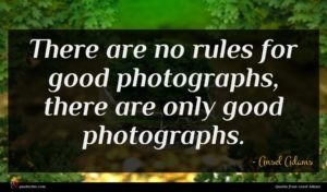 Ansel Adams quote : There are no rules ...