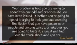 Anne Lamott quote : Your problem is how ...
