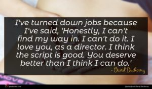 David Duchovny quote : I've turned down jobs ...
