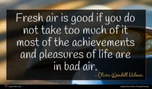 Oliver Wendell Holmes quote : Fresh air is good ...