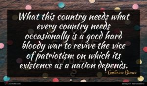 Ambrose Bierce quote : What this country needs ...