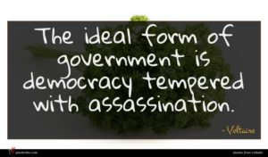 Voltaire quote : The ideal form of ...