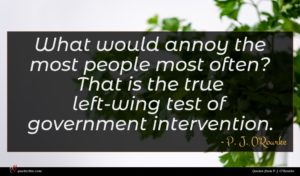 P. J. O'Rourke quote : What would annoy the ...
