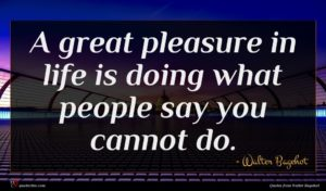 Walter Bagehot quote : A great pleasure in ...