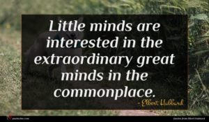 Elbert Hubbard quote : Little minds are interested ...