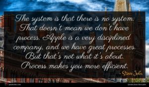 Steve Jobs quote : The system is that ...