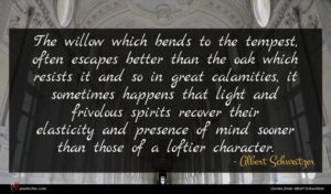 Albert Schweitzer quote : The willow which bends ...