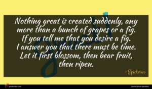 Epictetus quote : Nothing great is created ...