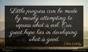 Calvin Coolidge quote : Little progress can be ...