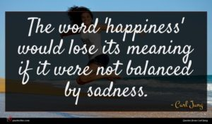 Carl Jung quote : The word 'happiness' would ...