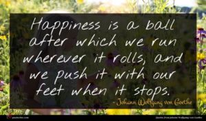 Johann Wolfgang von Goethe quote : Happiness is a ball ...