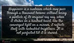 Jane Porter quote : Happiness is a sunbeam ...