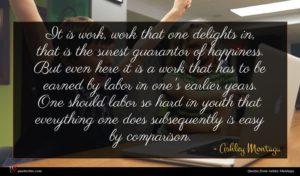 Ashley Montagu quote : It is work work ...