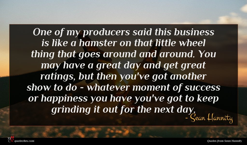 One of my producers said this business is like a hamster on that little wheel thing that goes around and around. You may have a great day and get great ratings, but then you've got another show to do - whatever moment of success or happiness you have you've got to keep grinding it out for the next day.