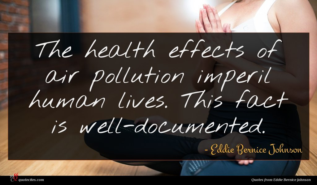 The health effects of air pollution imperil human lives. This fact is well-documented.