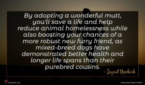 Ingrid Newkirk quote : By adopting a wonderful ...