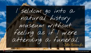 John Burroughs quote : I seldom go into ...