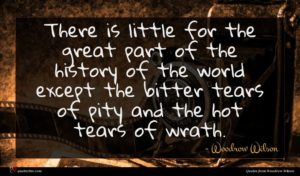 Woodrow Wilson quote : There is little for ...