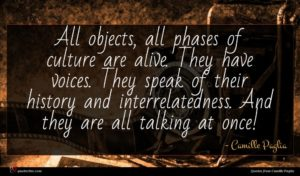 Camille Paglia quote : All objects all phases ...