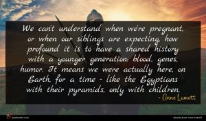 Anne Lamott quote : We can't understand when ...