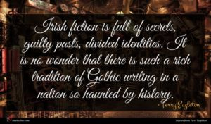 Terry Eagleton quote : Irish fiction is full ...