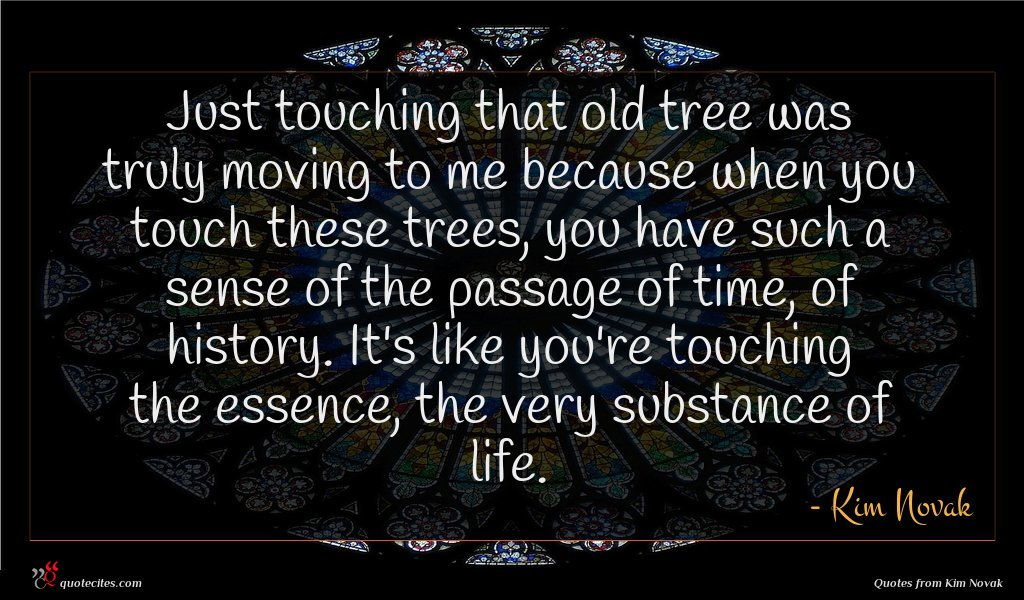 Just touching that old tree was truly moving to me because when you touch these trees, you have such a sense of the passage of time, of history. It's like you're touching the essence, the very substance of life.