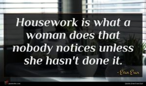 Evan Esar quote : Housework is what a ...