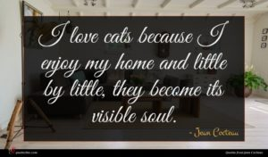 Jean Cocteau quote : I love cats because ...