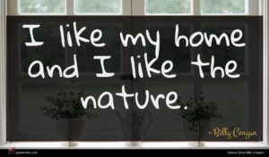 Billy Corgan quote : I like my home ...