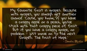 Demetri Martin quote : My favorite fruit is ...