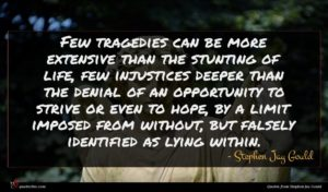 Stephen Jay Gould quote : Few tragedies can be ...