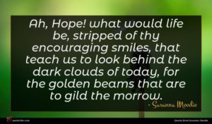 Susanna Moodie quote : Ah Hope what would ...
